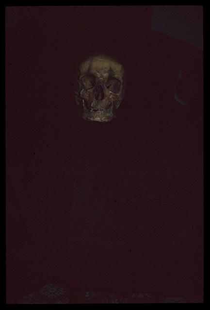 """""""Los miedos"""": Cubierta, tapa anterior: diapositiva original."""